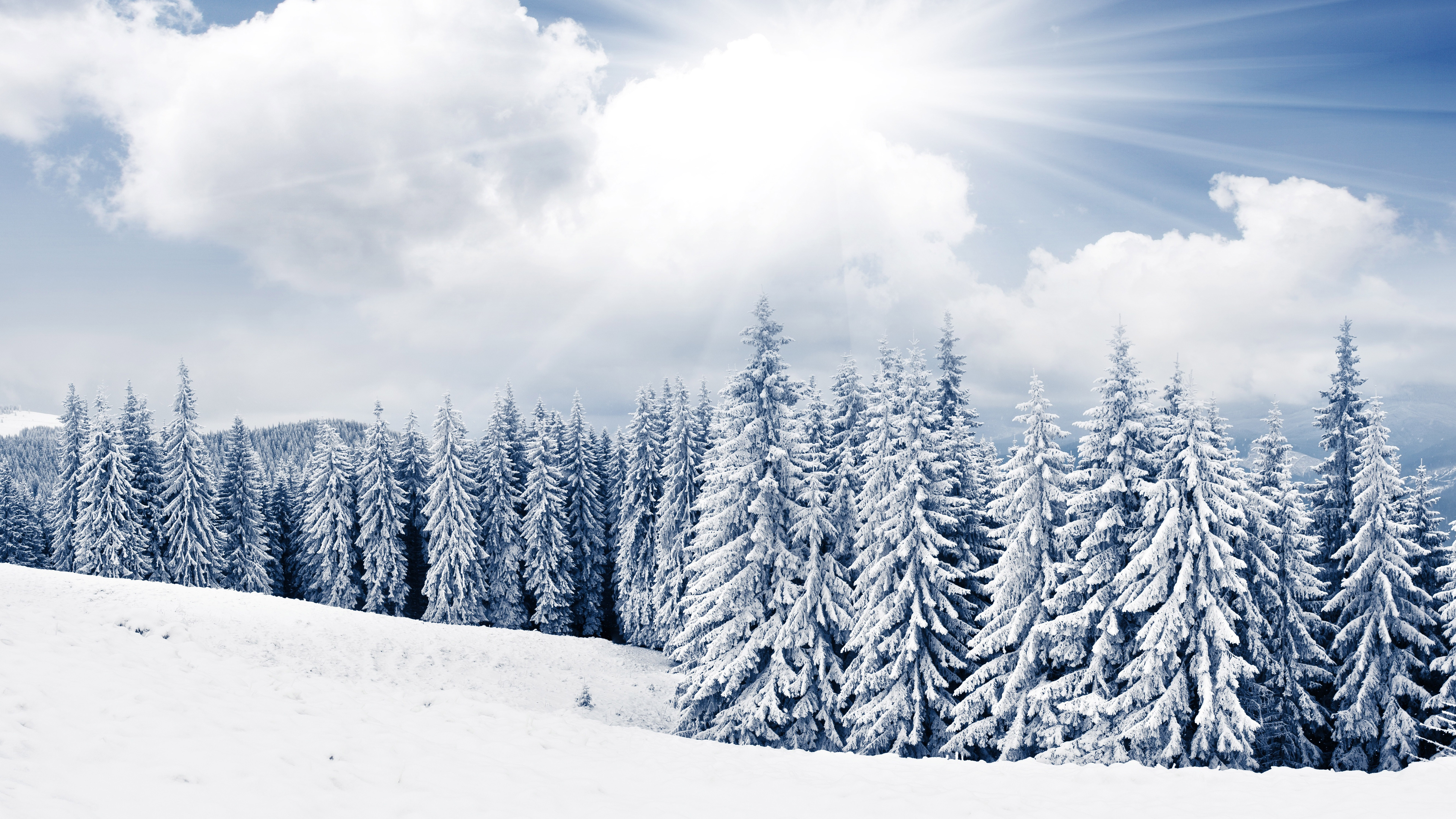 Snowy winter wallpapers high quality download free - Snowy wallpaper ...