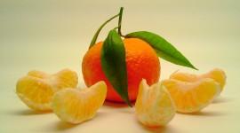 Tangerines Photo Free