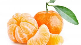 Tangerines Wallpaper Download