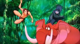 Tarzan Desktop Wallpaper