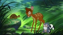 Thumper Wallpaper 1080p