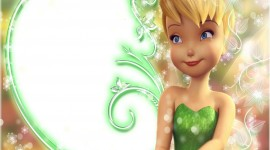 Tinker Bell Aircraft Picture