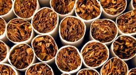 Tobacco Wallpaper Background