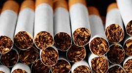 Tobacco Wallpaper Free
