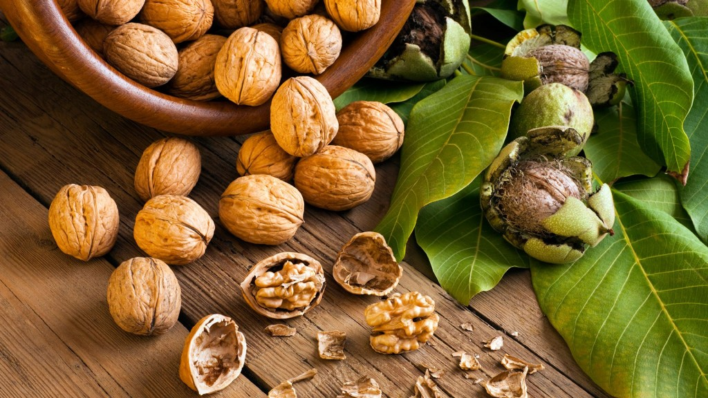 Walnuts wallpapers HD