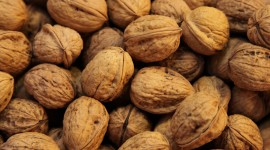 Walnuts Wallpaper For PC