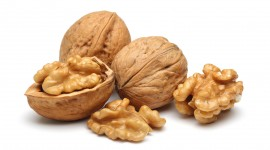 Walnuts Wallpaper Gallery