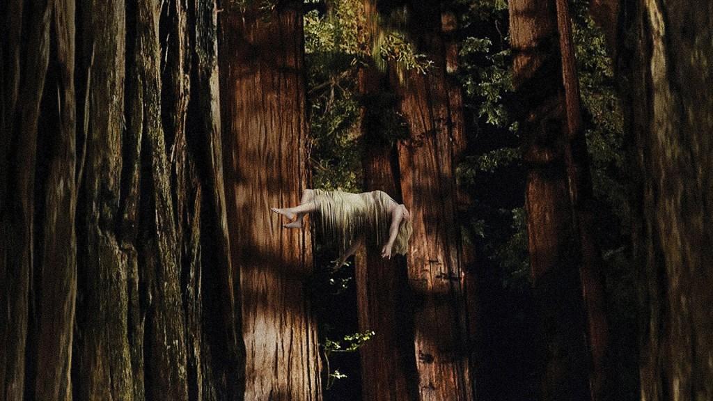 Woodshock wallpapers HD