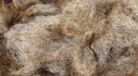 Wool Wallpaper Background