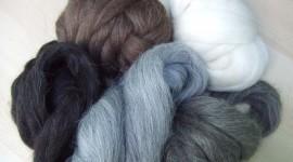 Wool Wallpaper High Definition