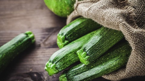 Zucchini wallpapers high quality