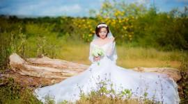 4K Bride Wallpaper