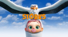 4K Storks Best Wallpaper