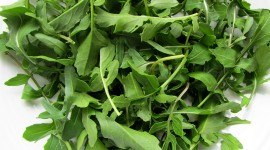 Arugula Wallpaper Download