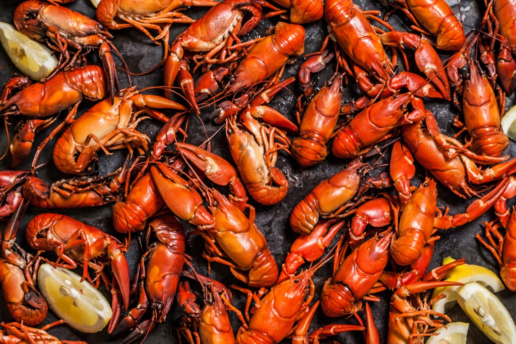 Boiled Crawfish wallpapers HD
