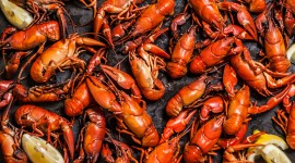 Boiled Crawfish Best Wallpaper