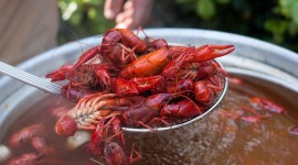 Boiled Crawfish Wallpaper For PC
