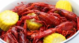Boiled Crawfish Wallpaper Full HD