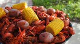Boiled Crawfish Wallpaper HD