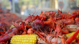 Boiled Crawfish Wallpaper High Definition