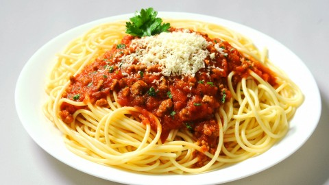 Bolognese wallpapers high quality