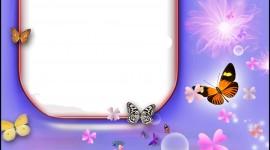 Butterfly Frames Wallpaper For Mobile