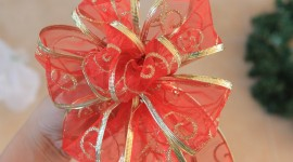 Christmas Bows Photo Download
