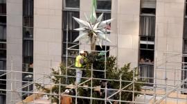 Christmas Star On Tree Photo