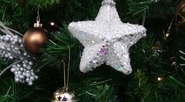 Christmas Star On Tree Wallpaper HQ