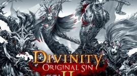 Divinity Original Sin 2 Best Wallpaper