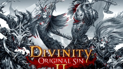Divinity Original Sin 2 wallpapers high quality