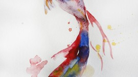 Fishes Watercolor Wallpapers High Quality Download Free