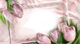 Floral Frame Best Wallpaper