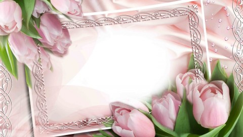 Floral Frame wallpapers high quality