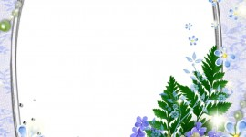 Floral Frame Wallpaper For Mobile
