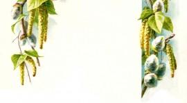 Floral Frame Wallpaper Free