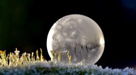 Frozen Bubbles Photo Free