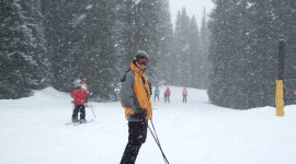 It's Snowing Photo#2