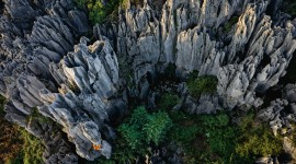 Karst Forest Shilin In China Best Wallpaper