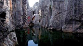 Karst Forest Shilin In China Wallpaper