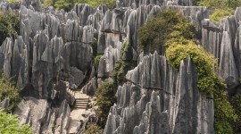Karst Forest Shilin In China Wallpaper Download