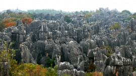 Karst Forest Shilin In China Wallpaper Download Free