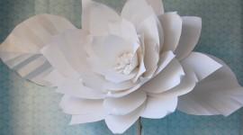 Paper Flowers Desktop Wallpaper#1