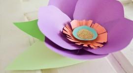 Paper Flowers Wallpaper Gallery