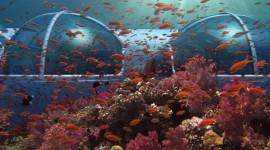Poseidon Undersea Best Wallpaper