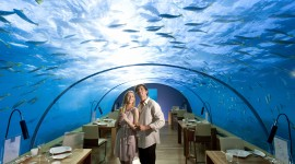 Poseidon Undersea Wallpaper Background