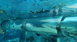 Poseidon Undersea Wallpaper HQ