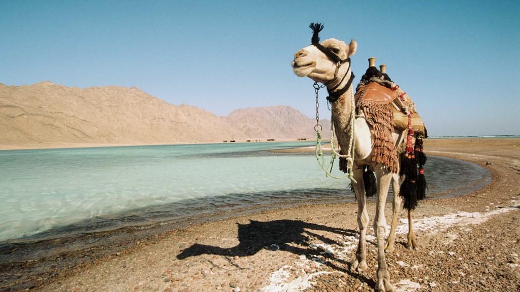 Sharm El Sheikh wallpapers HD