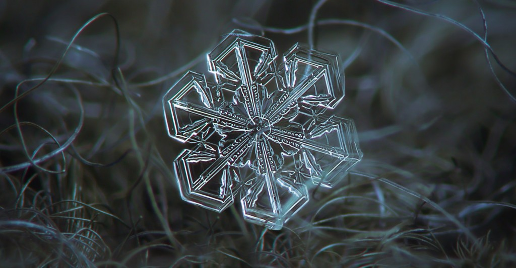 Snowflake Macro wallpapers HD