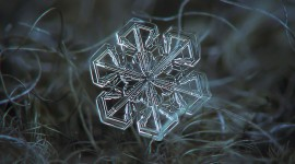Snowflake Macro Wallpaper Background